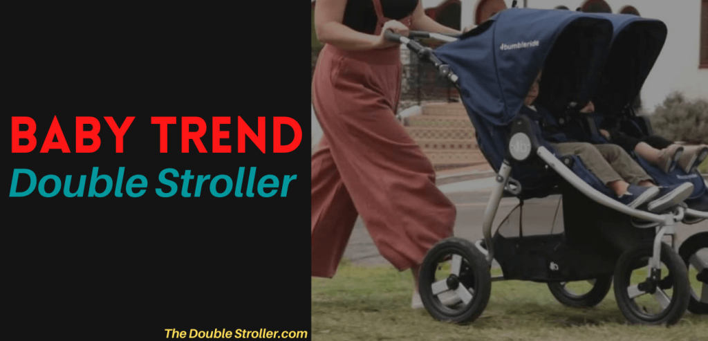 thedoublestroller.com